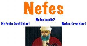 Nefes, Nefes nedir, Nefes özellikleri, Nefes şiir türü, Nefes 10.sınıf edebiyat