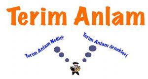 Terim, Terim anlam, terim anlam nedir, terim anlam özellikleri, terim anlam örnekleri