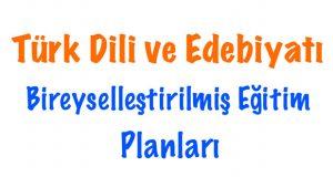Türk Dili ve Edebiyatı BEP, Türk Dili ve Edebiyatı Bireyselleştirilmiş Eğitim planı, Türk Dili ve Edebiyatı BEP planları, Türk Dili ve Edebiyatı BEP planı